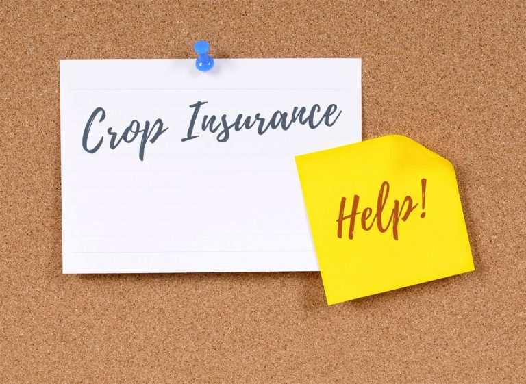 Crop Insurance Bulletin
