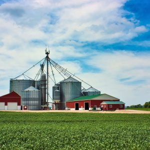 Crop and Farm Insurance